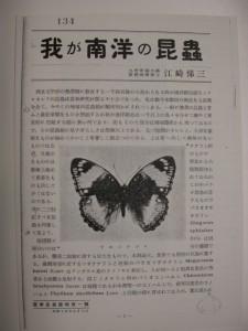 宝塚昆虫館報1号